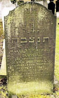 Freedman or Friedman, Sophia (married name)
