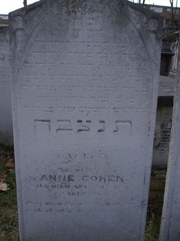 Cohen, Anne (married name)