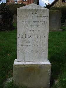 Meyer, Julius
