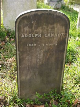Cannot, Adolph (Julian Adolph)