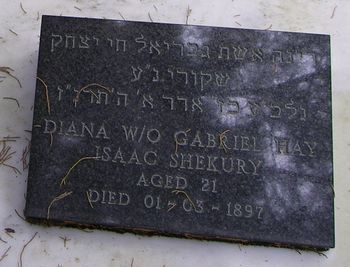 Shekury, Diana (married name)