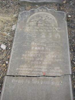 Cook, Fanny (married name)