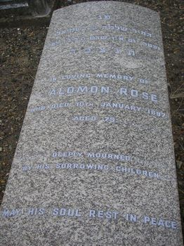 Rose, Salomon