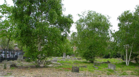 Bancroft Road Cemetery - general view