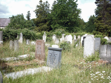 Southampton Cemetery - general view